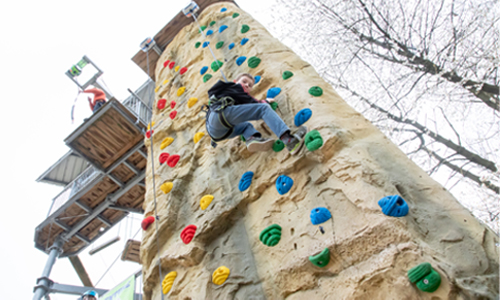 Image of a boy climbing the climbing wall